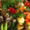 Alimentos orgânicos: Mitos e Verdades