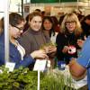 Curso de Alimentação Natural e Sustentabilidade em SP