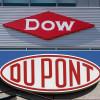 Brasil aprova fusão da DuPont e Dow Chemical, gigante de agrotóxicos e sementes de US$ 130 bilhões