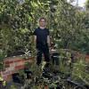 """Australiano transforma espaço de 60 m² em """"fazenda urbana"""""""