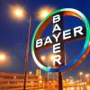 Caso a Bayer compre a Monsanto será criada a maior empresa mundial de agrotóxicos e transgênicos