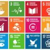 Agricultura orgânica: caminho para o desenvolvimento sustentável