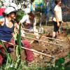 Hortelões Urbanos: do Facebook ao cultivo de hortas comunitárias nos espaços públicos de SP