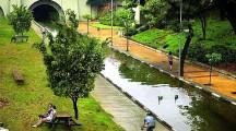 Os rios vivos de São Paulo que correm embaixo das ruas e avenidas da cidade