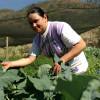 Brasil dobra o número de agricultores orgânicos em três anos