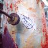 África do Sul, Hong Kong, Japão, Chile, Egito, México e Suíça integram os 14 países que até agora suspenderam as compras da carne brasileira, enquanto a Coreia do Sul voltou atrás