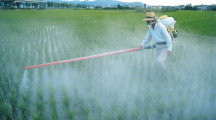Mais de 1,6 milhão de pessoas apoiam a Campanha Chega de Agrotóxicos e são contra o Pacote do Veneno