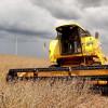 Brasil lidera produtividade agrícola mundial, diz estudo