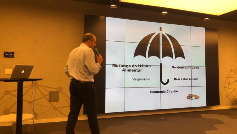 Conheça a AGN, consultoria que atua nas startups de alimentos saudáveis e plant based