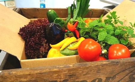 Caixa com legumes e verduras custa 15 euros e é entregue no mercado