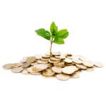 Alimentos orgânicos: uma opção de vida e um bom negócio