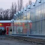 Em Berlim, fazenda urbana e sustentável produz vegetais e peixes em larga escala
