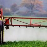 Agroquímicos e agricultura natural:  dois modelos em conflito