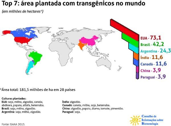 Quadro-transgenicos