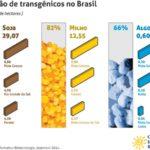Lavouras transgênicas avançam no Brasil e já ocupam mais de 42 milhões de hectares
