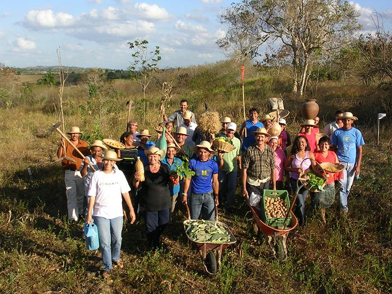 Agricultores orgânicos do Programa de Desenvolvimento Local do Agreste da Paraíba. Foto: Divulgação
