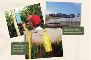 Manual lançado pelo CI Orgânicos/SNA, com o apoio do Sebrae e Itaipu Binacional, orienta produtores sobre aspectos importantes do mercado de orgânicos. Foto: Divulgação SNA