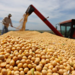 Safra brasileira de grãos 2015/16 deve atingir 210,3 milhões de toneladas