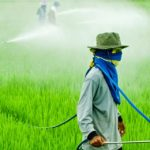 Ministério da Saúde aponta uso excessivo de agrotóxicos no Brasil