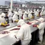 Idec divulga lista de produtos investigados pela Operação Carne Fraca