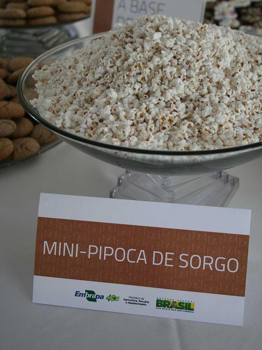 Alimentos-Mini-pipoca-de-sorgo