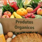 A capilaridade dos alimentos orgânicos e saudáveis no Brasil