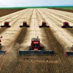 Safra de grãos poderá atingir recorde histórico com 234,3 milhões de toneladas
